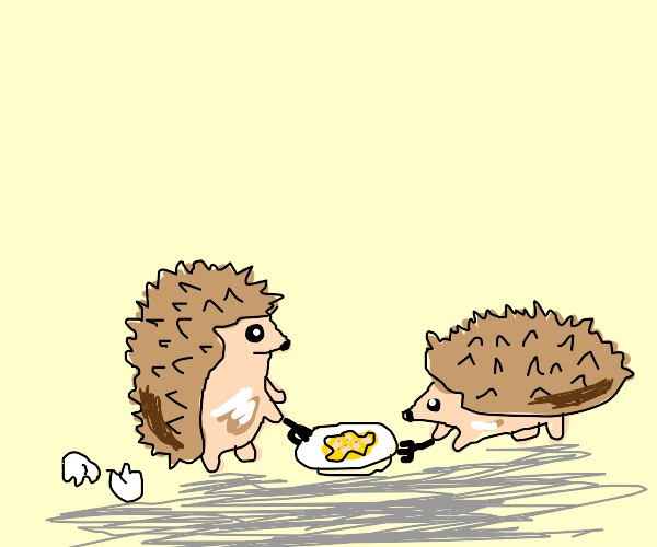 Two hedgehogs eating scrambled eggs