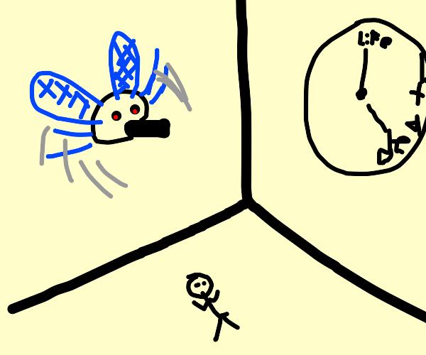 living room fly