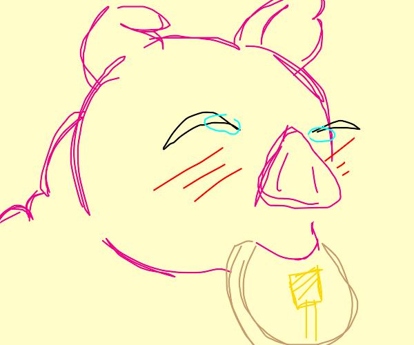 Pig eats large stack of pancakes