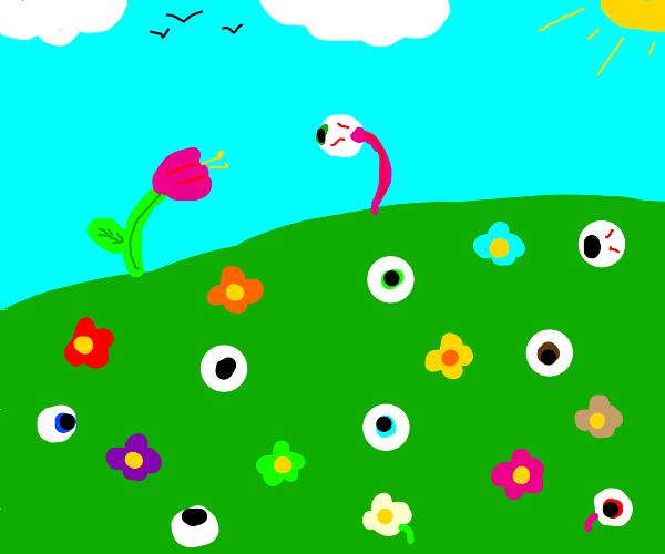 field of flowers and eyeballs