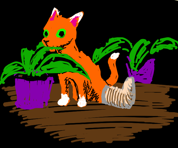 injured cat eats plant