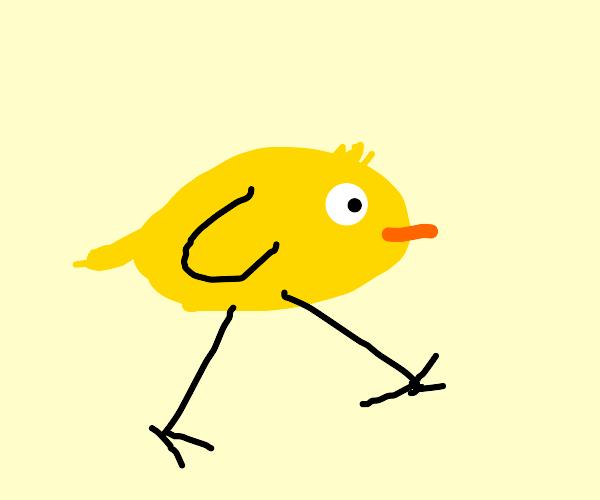 A Walking Bird