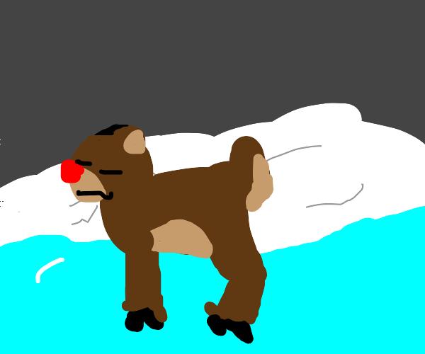 Rudoph the red nosed reindeer