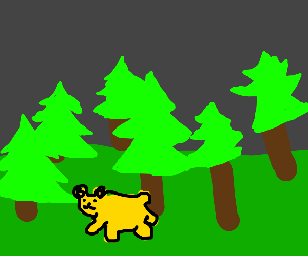 a yellow bear in the woods