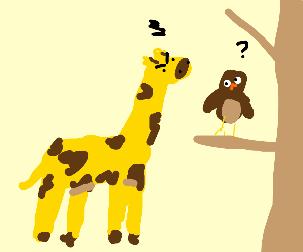 giraffe is mad at owl but owl doesnt know why