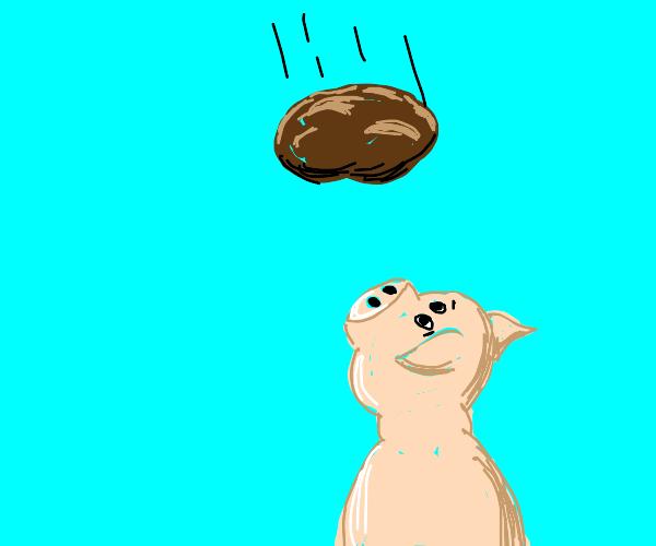 Potato falls on a pig