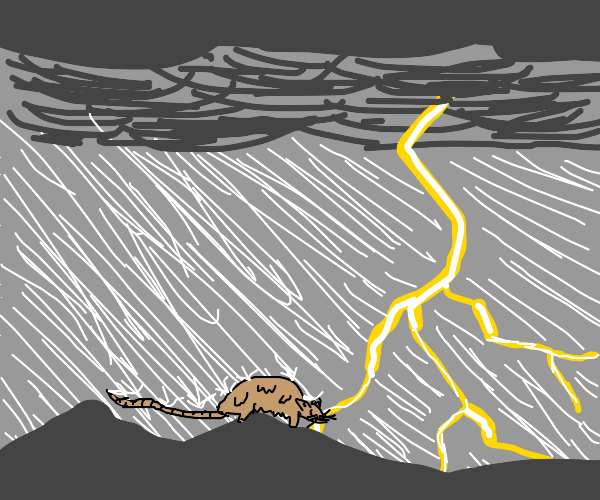 Mouse in a Storm