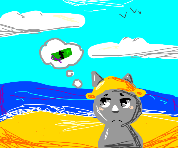 beach cat thinking about money
