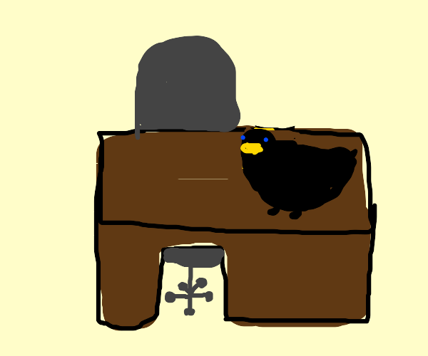 Black bird, yellow beak, at an office desk