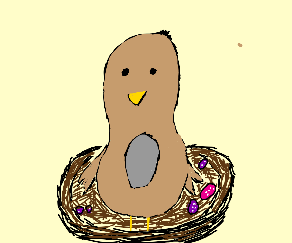 Momy bird with its chocolate eggs in it.