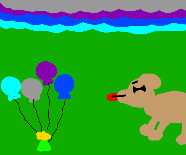 dog is disgusted by small balloons
