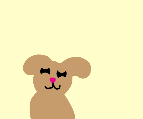 Puppy smiles