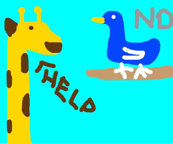 giraffe asks for help, bird says no