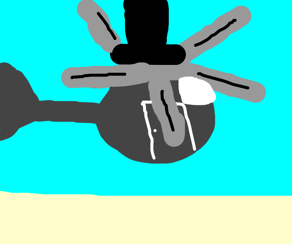 Helicopter wearing a Top Hat