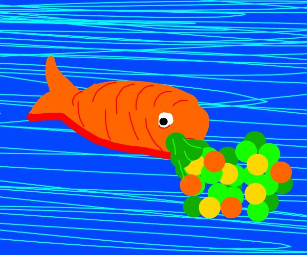 Fish Puking