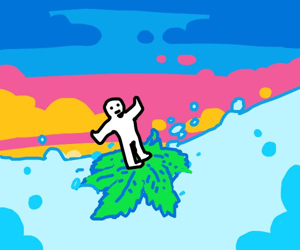grass surfing