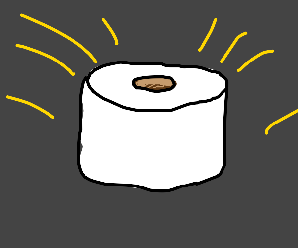 The best toilet paper roll