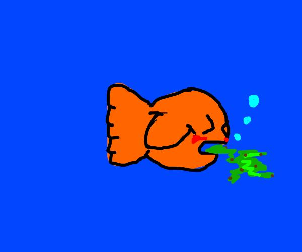 Vomiting fish