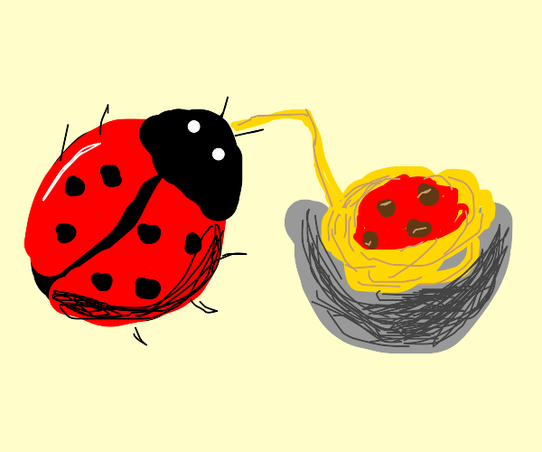 Lady bug consumes spaghetti