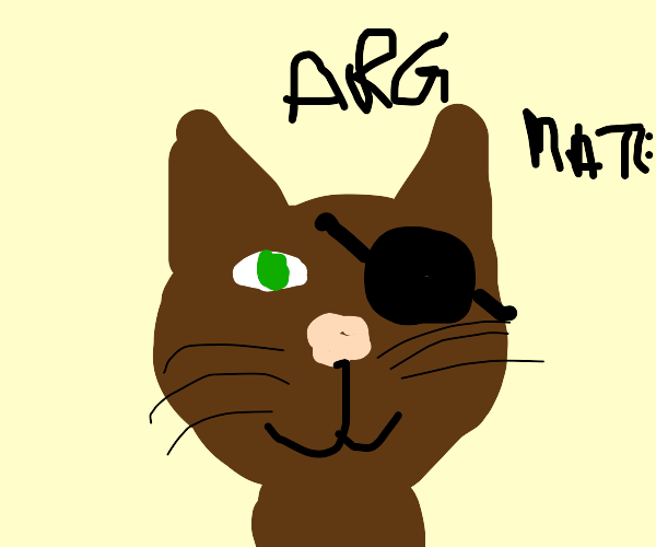 Cat pirate