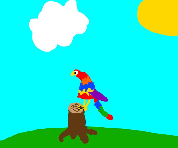 Parrot on a stump