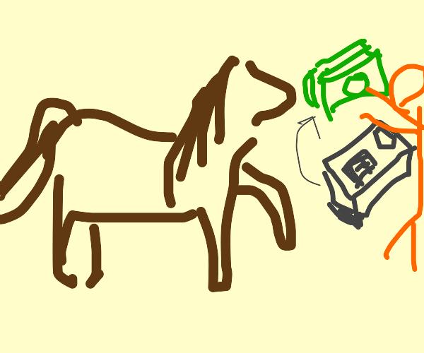 Horse Cashier