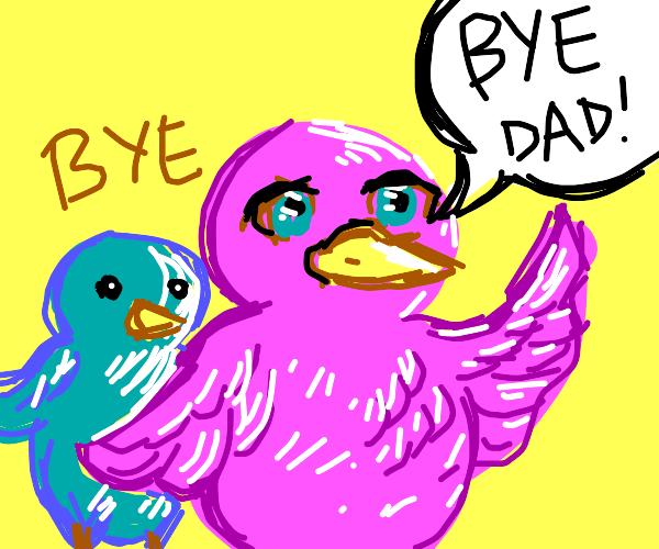 bird kids say bye to dad