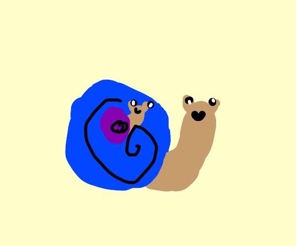 Snailception