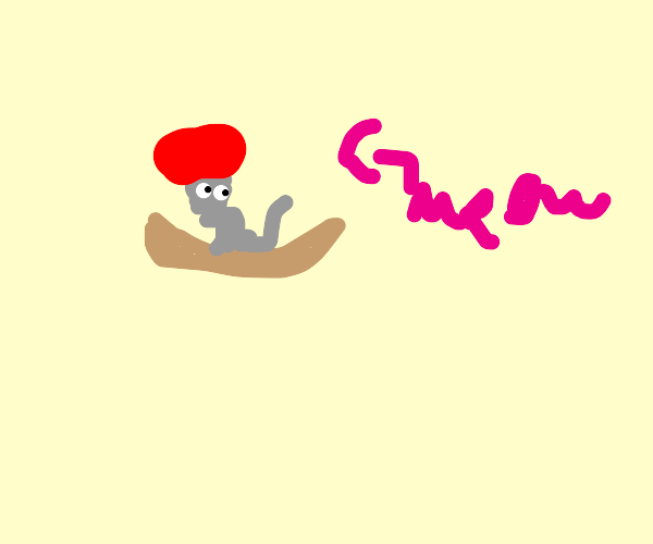 A cat in a boat wearing a hat