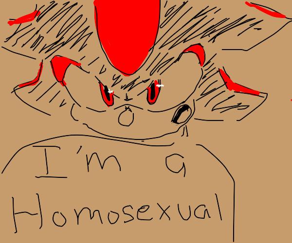 Shadow the Hedgehog but gay