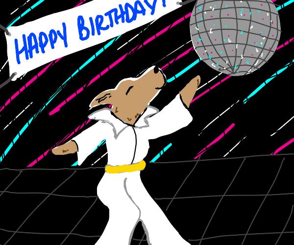 Dog birthday party at disco