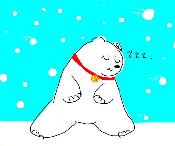 Pet Polar Bear