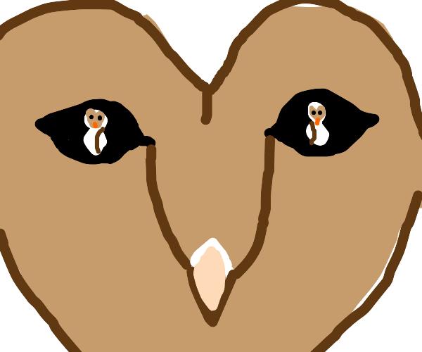 Owl reflected on an owl's eye