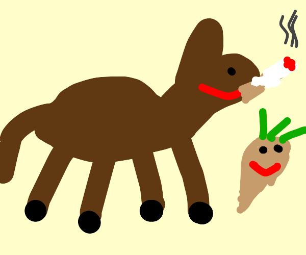 Smoking donkey has a turnip friend