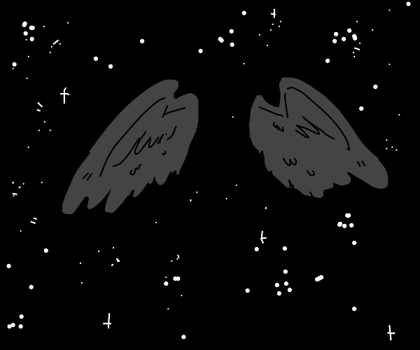 Wings at night, but the bird's body's missing