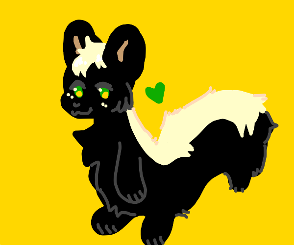 cute little skunk