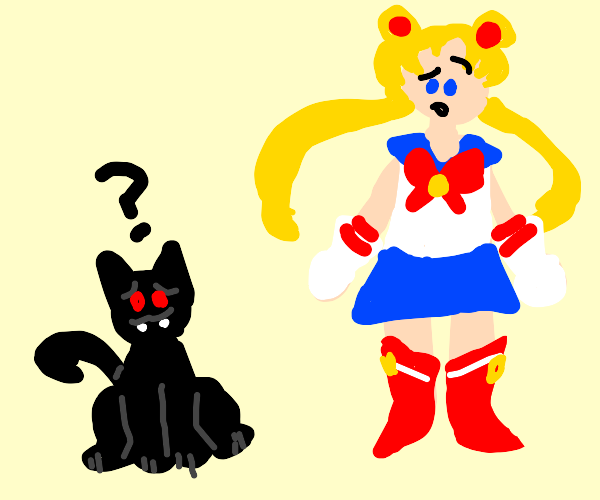 Vampire cat looks confused with sailor moon