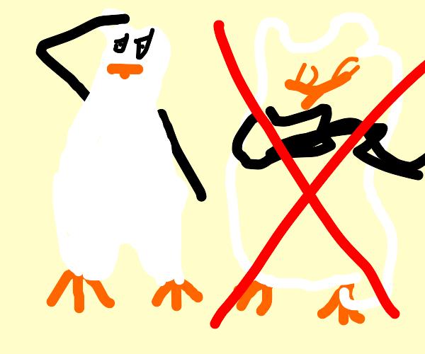 kowalski hates skipper