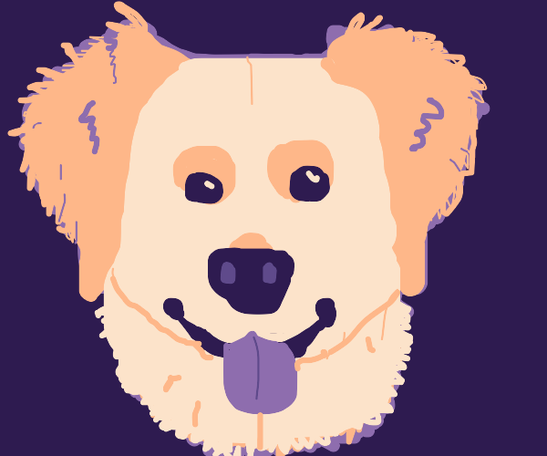 Adorable doggy