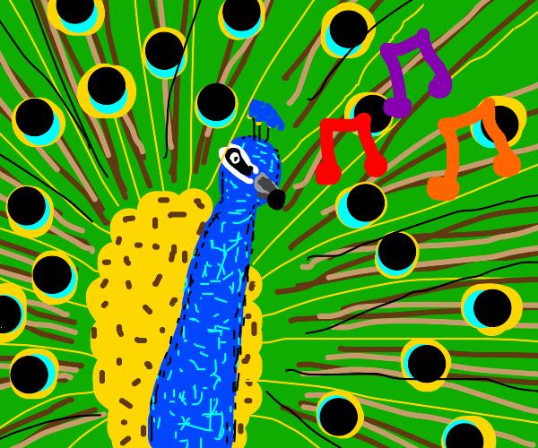 Peacock Singing