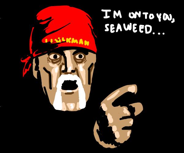 Hulk Hogan suspicious of seaweed