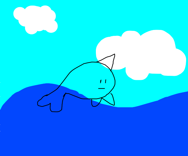 Narwhal playing in the Water