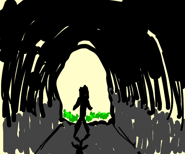 Person entering a cave(a Bat's point of veiw)