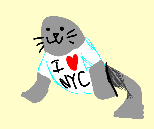 This seal LOVES New York!
