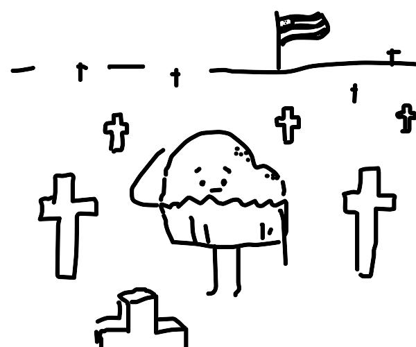 Veteran from the cupcake wars