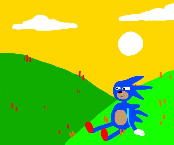 Sanic in a grassy field