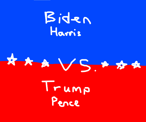The 2020 American election