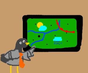 Pigeon weather man
