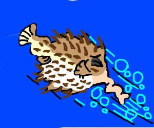 Pufferfish with asthma