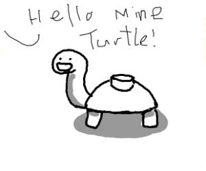 hello mine turtle